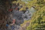 春に向けての鳩ノ巣渓谷遊歩道